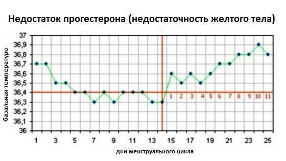 Какая должна быть базальная температура перед овуляцией, месячными (менструацией), пмс