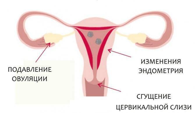 Беременность после противозачаточных таблеток   уроки для мам