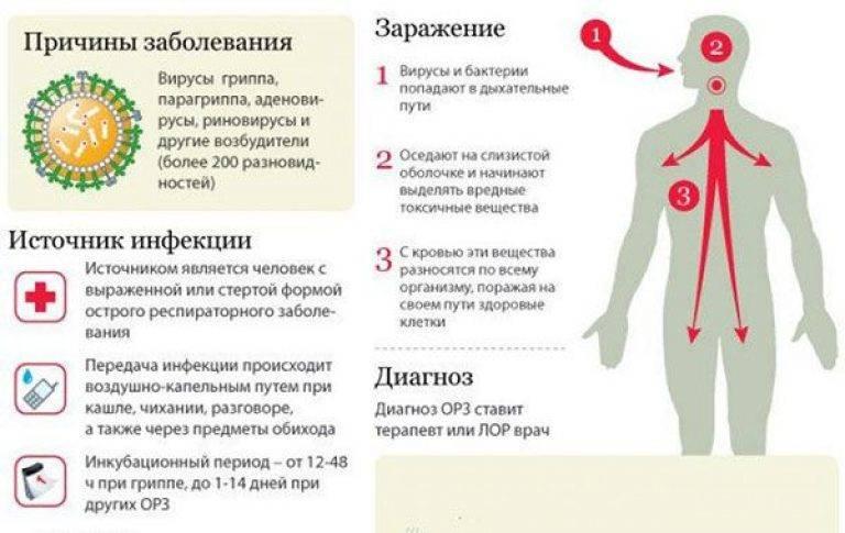 Остаточный кашель после бронхита у ребенка - педиатор