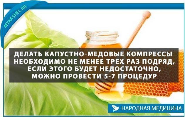 Инструкция как приготовить капустный лист с медом от кашля