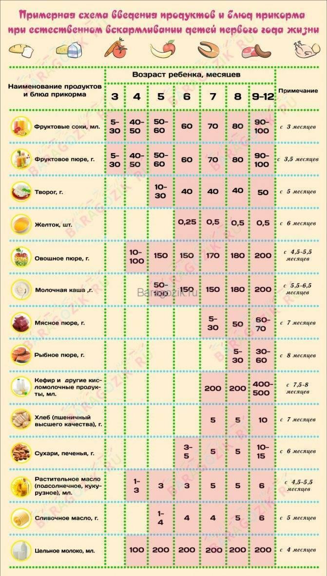 Прикорм в 8 месяцев при грудном вскармливании: таблица с меню и рационом