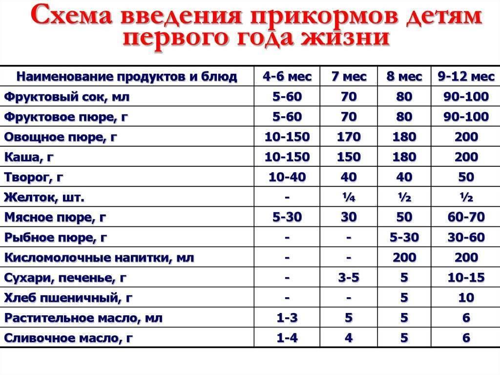 Схема прикорма с 6 месяцев: подробное меню для детей по дням