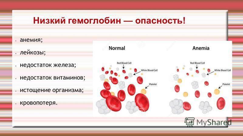 Повышен гемоглобин в крови у ребенка: почему и как понизить