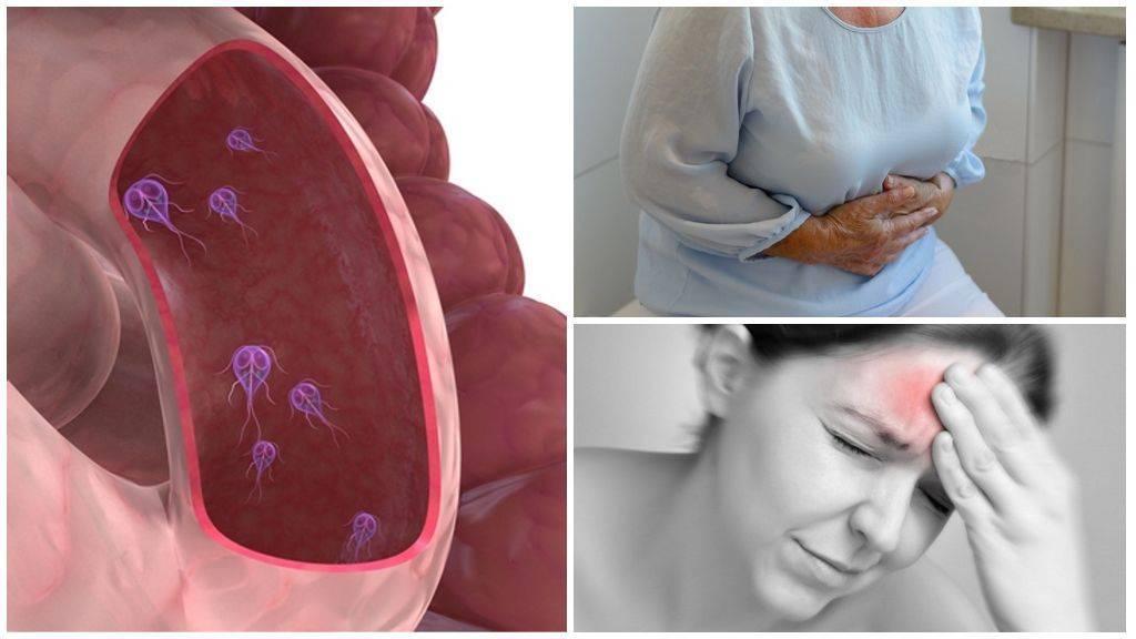 Симптомы и лечение лямблий в печени у взрослых, детей