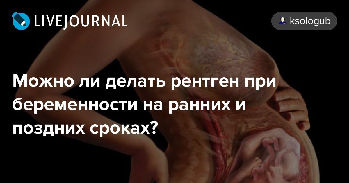 Можно ли употреблять в пищу креветки при беременности? - для мам
