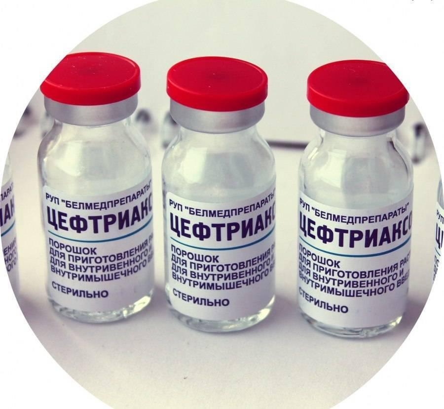 Цефотаксим детям - инструкция по применению антибиотика в уколах, дозировка и аналоги средства