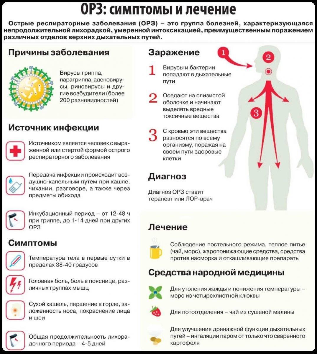 Полиомиелит: признаки заболевания, лечение и профилактика
