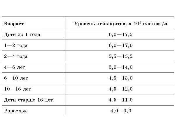 Содержание лейкоцитов в крови. норма, повышенные и пониженные лейкоциты в анализе крови