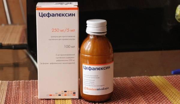 Цефалексин: инструкция по применению, цена, отзывы, аналоги, таблетки 250 мг и 500 мг, суспензия для детей