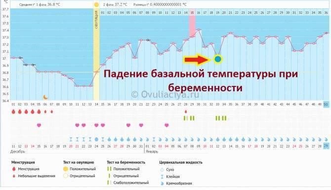 Повышенная температура во время месячных. причины повышенной температуры во время месячных