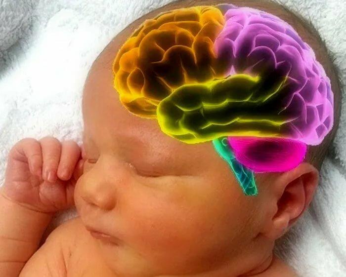 Незрелость коры головного мозга ребенка: последствия и лечение новорожденных - нет заразе