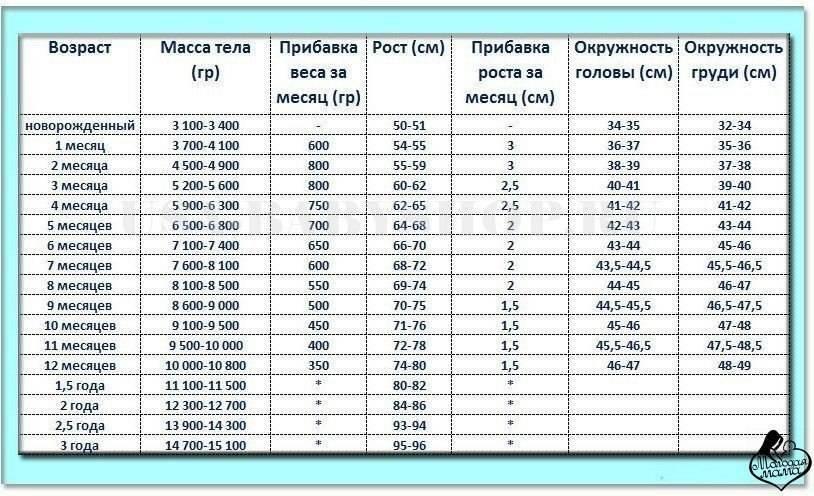 Размер одежды для новорожденных по месяцам