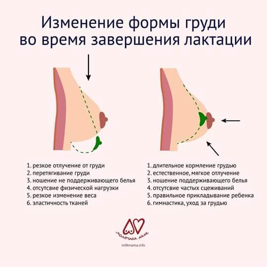 Боль в груди и сосках во время и после кормления грудью: причины, спосбы лечения и профилактики