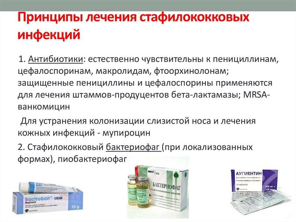 Стафилококк в носу: причины появления, симптомы, лечение