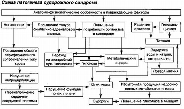 Разные виды судорог и судорожный синдром у детей