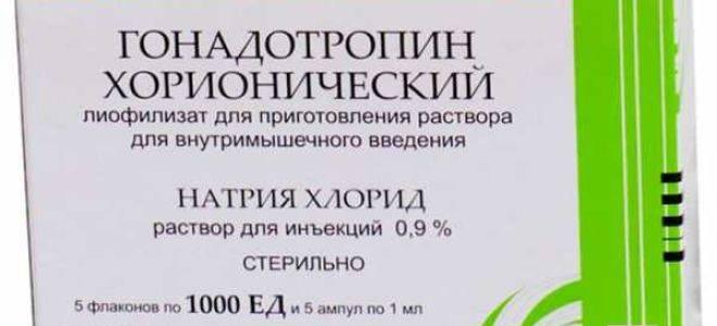 ᐉ хгч: уровень и норма, отклонения — повышен и понижен, у женщин и мужчин. хгч у мужчин: что такое гонадотропин хорионический - mariya-mironova.ru