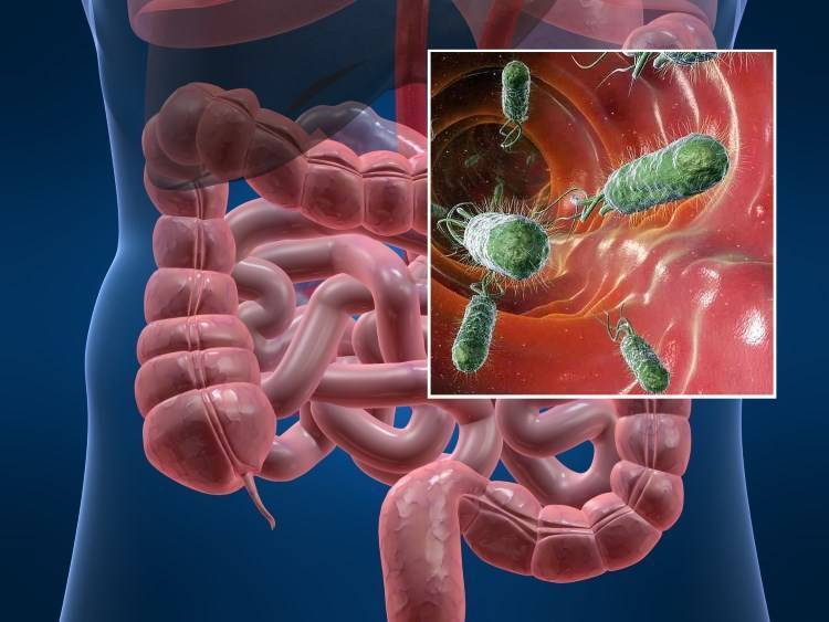 Болезнь Крона у детей: симптомы и лечение воспаления пищеварительного тракта