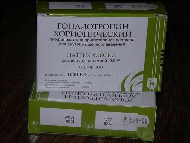 Хорионический гонадотропин в бодибилдинге, как принимать, инструкция по применению