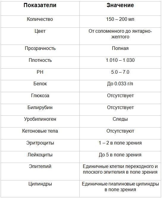 Расшифровка общего анализа мочи у ребенка: таблица, результаты, нормы