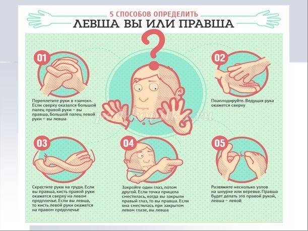 Мама для мам: левша или правша: как определить ведущую руку ребенка