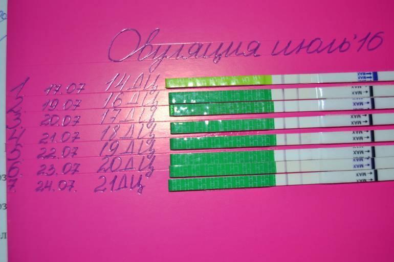 На каком сроке узи показывает беременность (21 фото): когда можно определить и видна беременность, на какой неделе на ранних сроках покажет беременность после зачатия