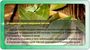 Лавровый лист для прерывания беременности рецепт как принимать отзывы