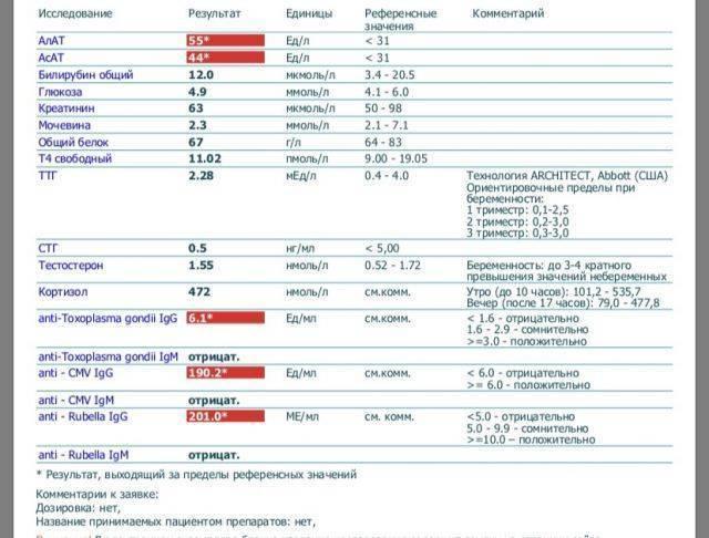 Анализ на краснуху во время беременности: расшифровка