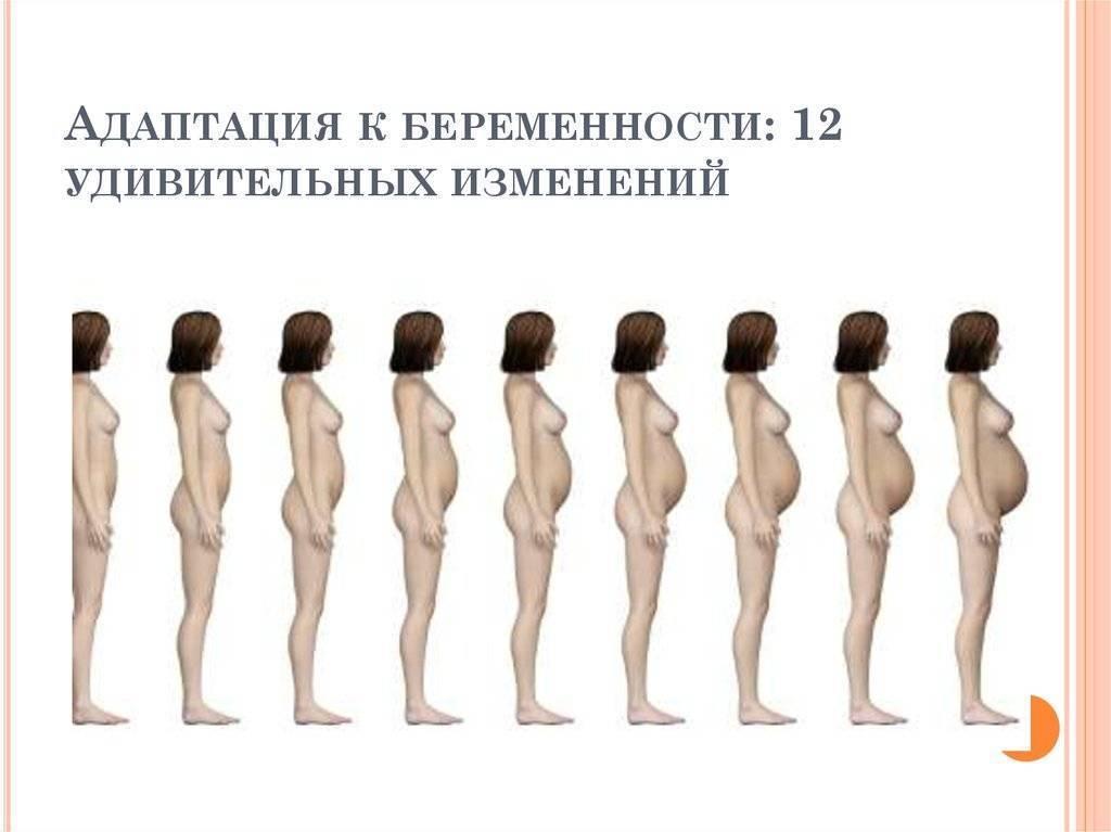 До какого возраста растет грудь: стадии, влияющие факторы, как стимулировать