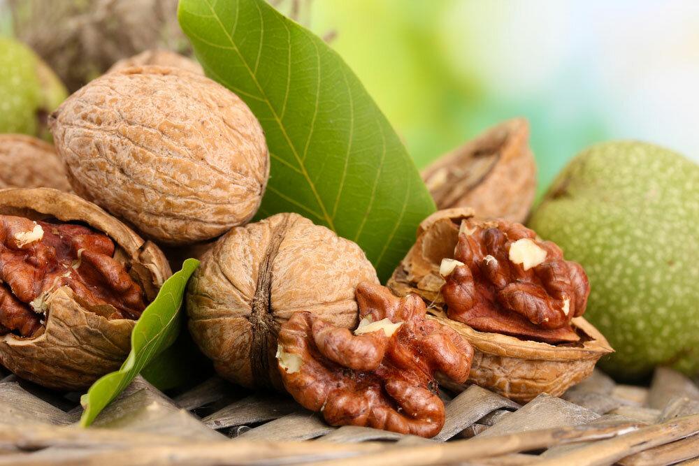 Грецкие орехи при беременности: польза и вред, можно ли есть на ранних сроках