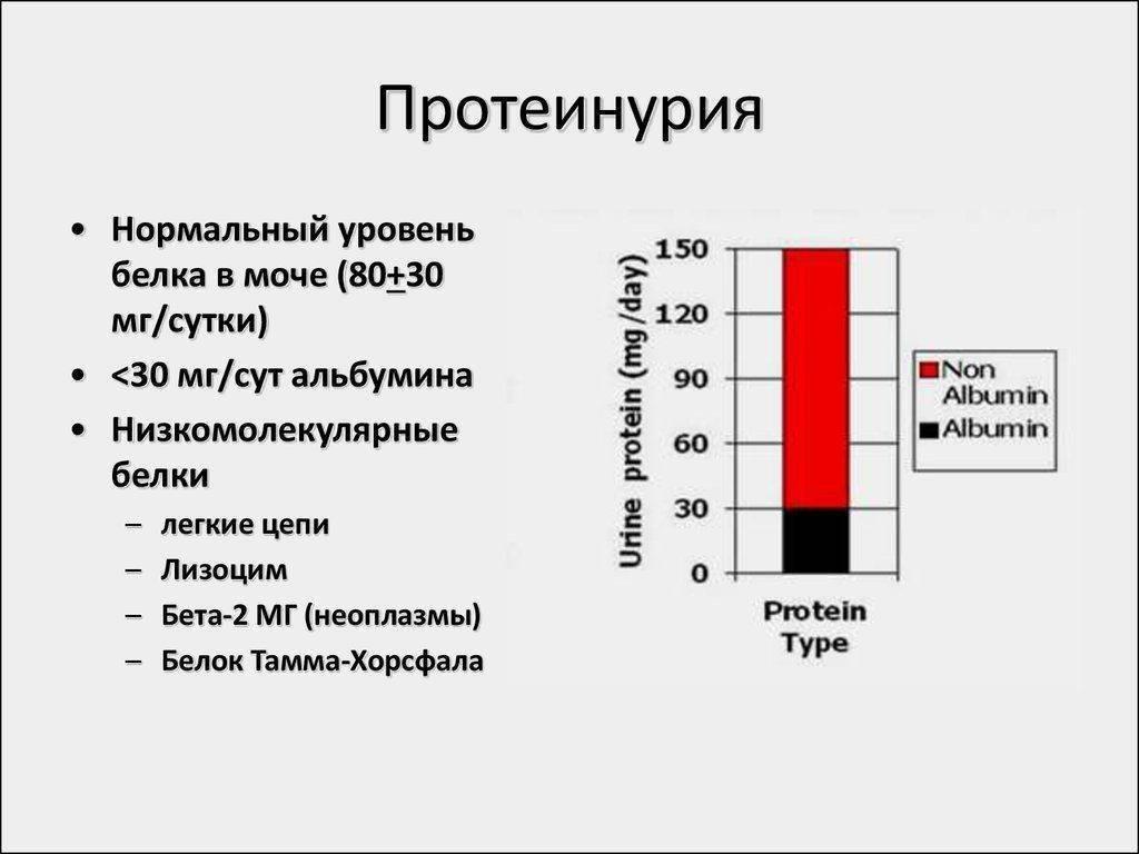 Повышенный белок в моче у женщин и мужчин - что это значит: причины, норма