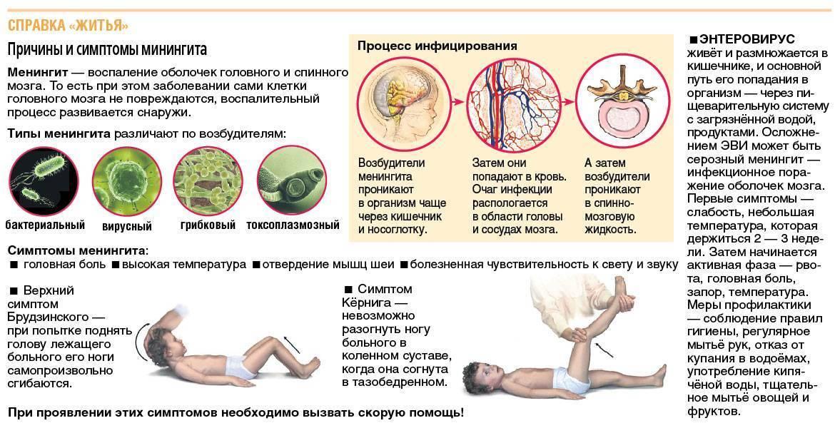 Важные сведения о менингококковой инфекции у детей и взрослых