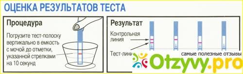 Как пользоваться тестом на беременность clearblue, evitest, струйный, электронный, цифровой