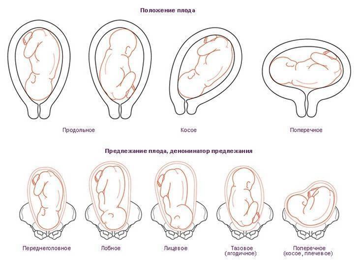 9 важных фактов о шевелении плода: как определить, что с малышом все в порядке