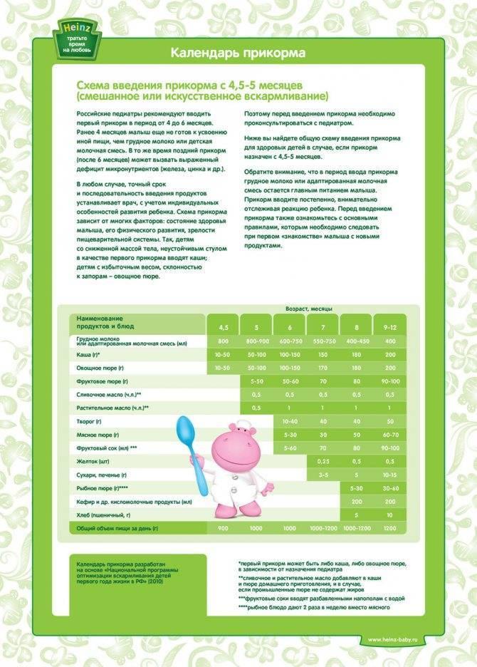 Введение прикорма в 6 месяцев при грудном и искусственном вскармливании