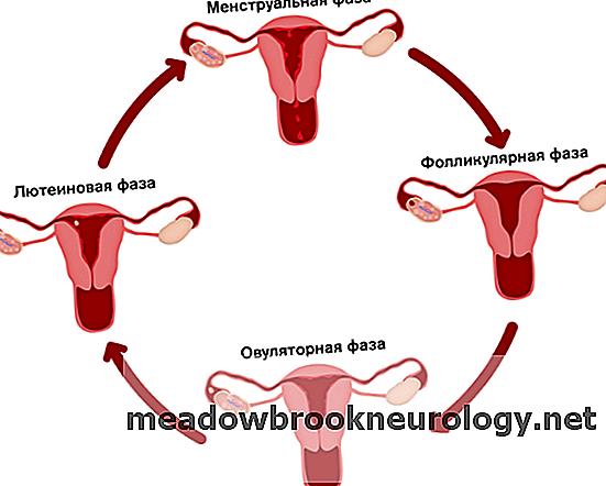 Кровотечение или мазня после экстренной контрацепции