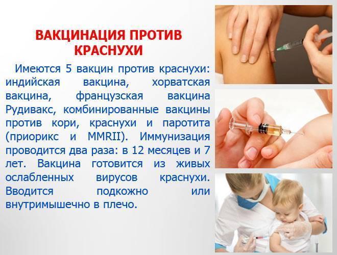 Прививка от краснухи детям: как, когда и куда делают прививку, возможные последствия вакцинации