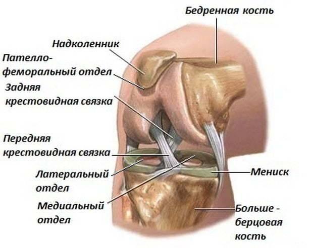 У ребенка болят ноги: после орви возникли осложнения на колени, мышцы, икры и суставы ног