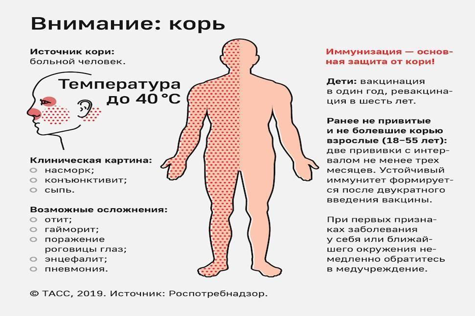 Инфекционная эритема чамера у детей и взрослых: фото, симптомы и лечение - все о болезнях