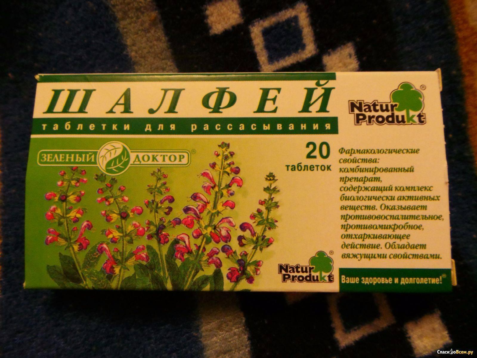 Шалфей при беременности: можно ли принимать и в каких дозах / mama66.ru