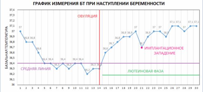 Как измерить базальную температуру в домашних условиях - рекомендации