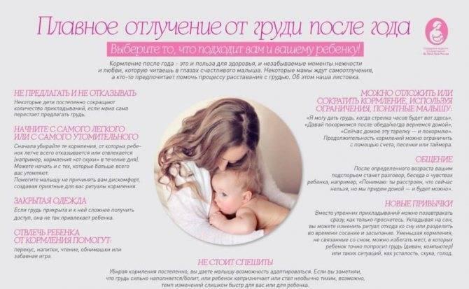 Как научить ребенка засыпать без гв: эффективные способы для молодой мамы