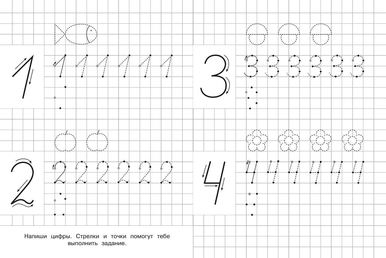 Печатные цифры для дошкольников. как научить ребенка-дошкольника правильно писать буквы и цифры: прописи, советы и хитрости обучения