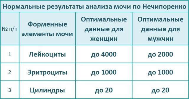Анализ мочи по нечипоренко: норма у детей, как правильно собрать урину, расшифровка результатов