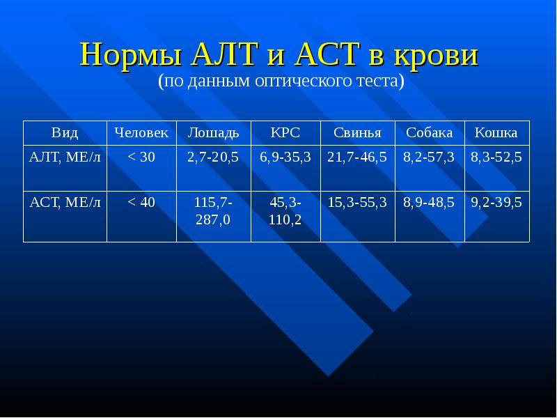 Повышен алт: причины повышения, способы лечения и нормы алт