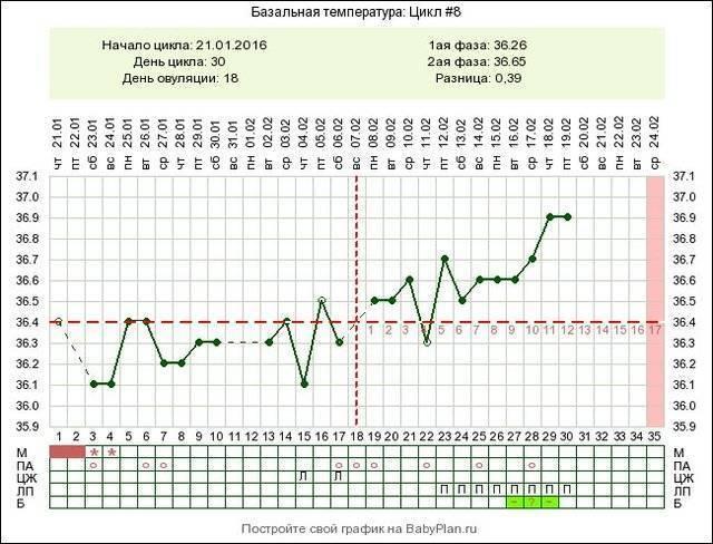 Базальная температура на ранних сроках и при замершей беременности: какая она должна быть и как правильно измерять?