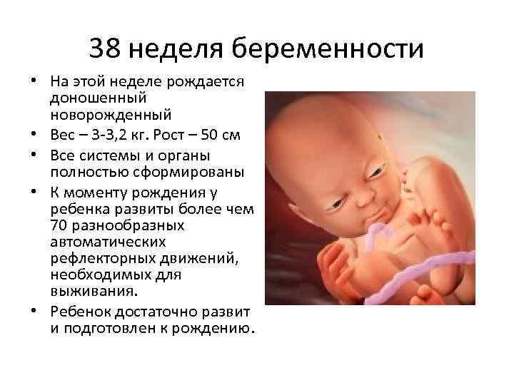 Мальчики рождаются раньше или позже срока. на какой неделе рожают