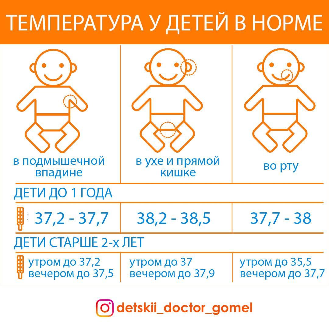 Температура 37 у грудничка в 2-6 месяцев без симптомов