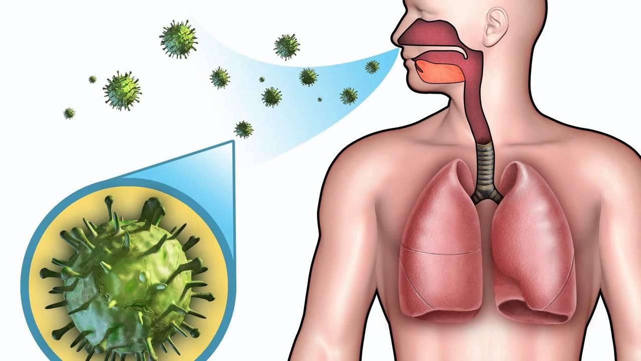 Затяжной кашель после орви и простуды: медикаментозное и народное лечение