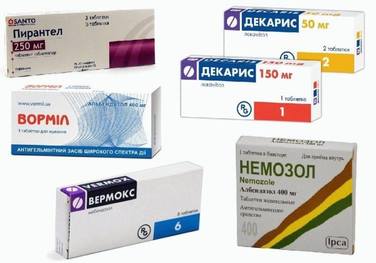 Таблетки от глистов для человека для профилактики: какие лучше, названия и цена