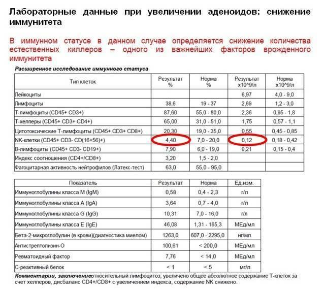 Анализ асло – показания, причины повышения, расшифровка | dlja-pohudenija.ru